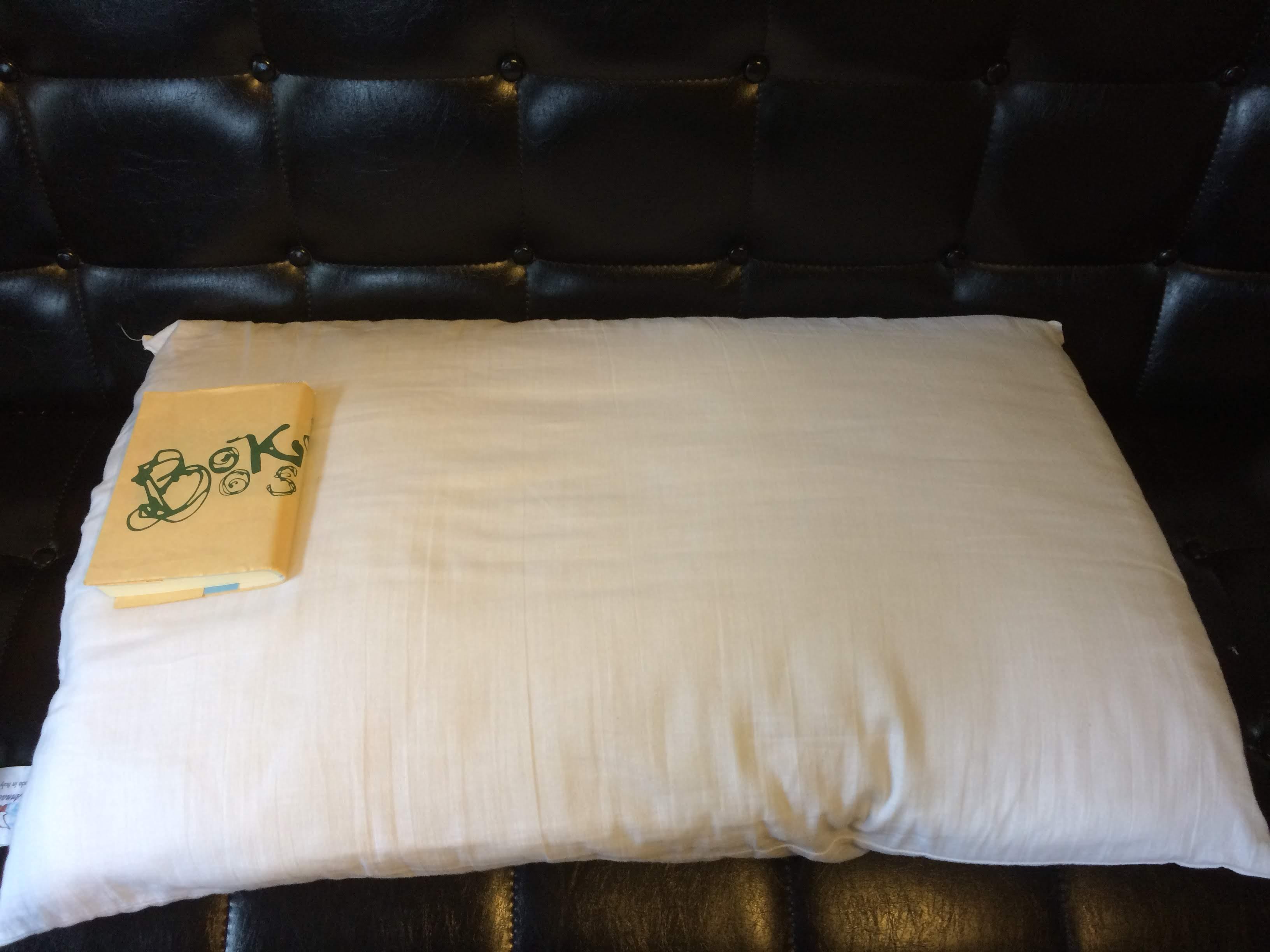 アンナブルースリープメディカル枕の画像