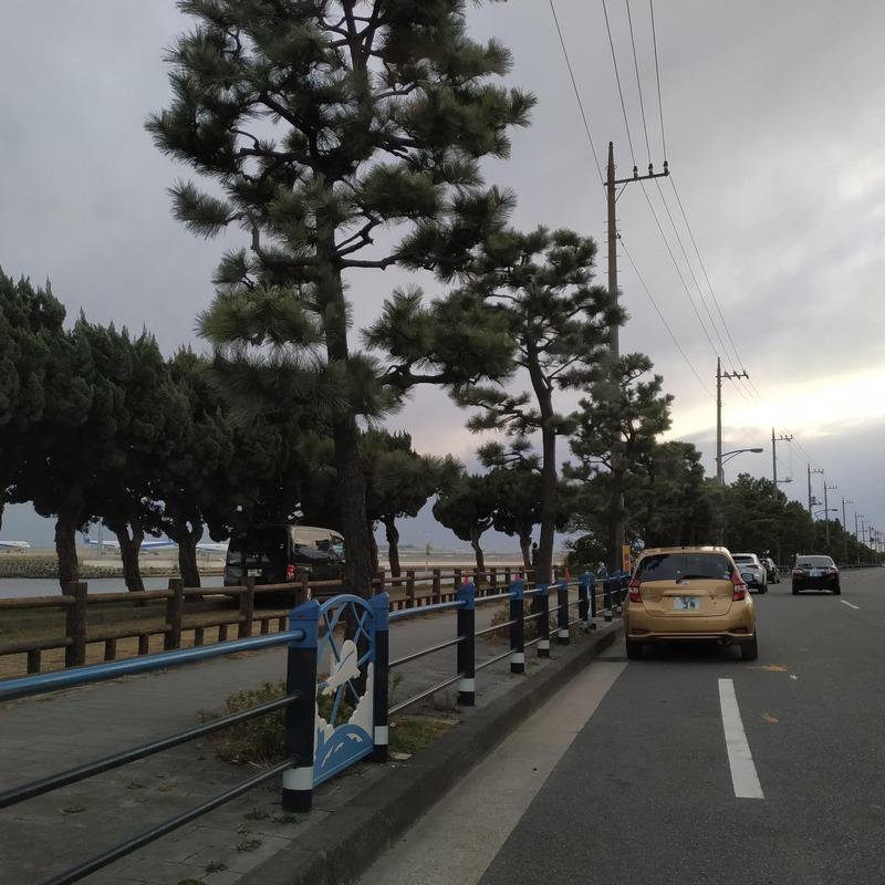 京浜島つばさ公園前の路上駐車